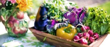 Cuisine au jardin Plessé