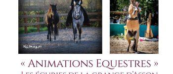 Animations équestres : dialogues équestres La Boissière-de-Montaigu