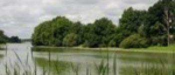 Observation des oiseaux de la réserve du Massereau Frossay