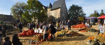 Les 31èmes Hortomnales, grande fête des Cucurbitacées Brissac Loire Aubance