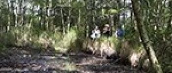 A la découverte des tourbières Sucé-sur-Erdre