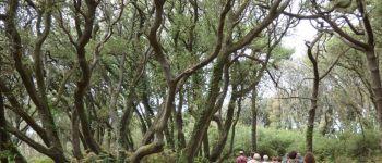 Sortie nature : La Pointe du Payré, trésor de biodiversité Jard-sur-Mer