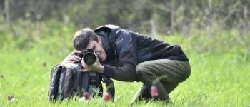 Sortie nature : stage de photographie macro-insectes Les Landes-Genusson
