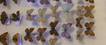 La fête de la science à la réserve - « collections naturalistes : inventaires de biodiversité ! » Nalliers