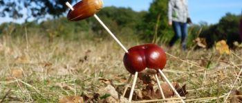 Sortie nature : Land art d'automne Pissotte