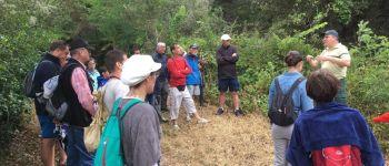 Sortie nature : au cœur de la forêt avec l\office national des forêts Les Herbiers