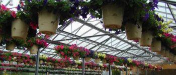 Vente de plants en drive Saint-Nazaire