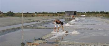 Visite des marais salants de la Guittière Talmont-Saint-Hilaire