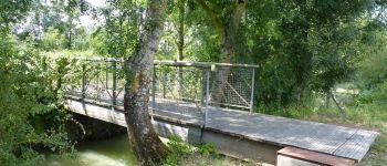 De terrées en levée, le Marais Poitevin des bois blancs Saint-Pierre-le-Vieux