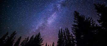 Sortie semi-nocturne en forêt Vouvant